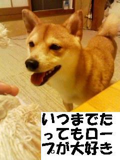 roupuzuki.jpg