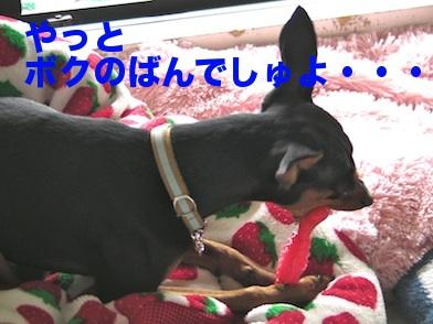 20110729-8.jpg