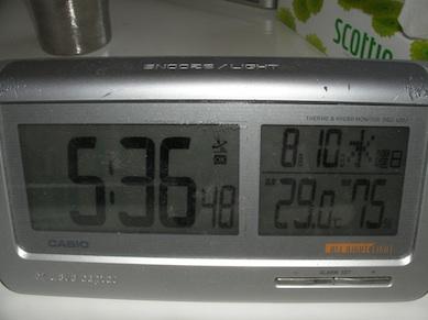 20110810.jpg