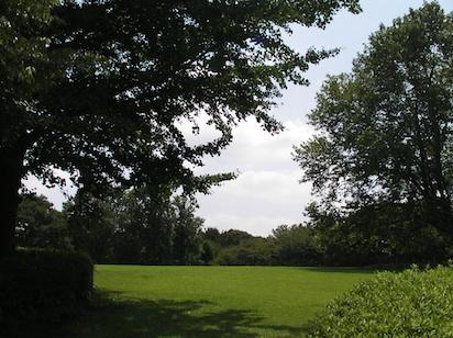 20110829-5.jpg