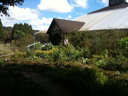 20110919-5.jpg