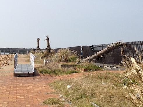20111105-7.jpg