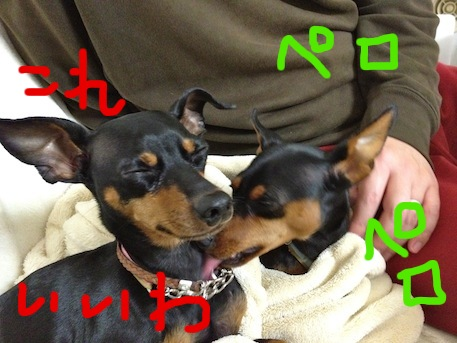 20120227-2.png