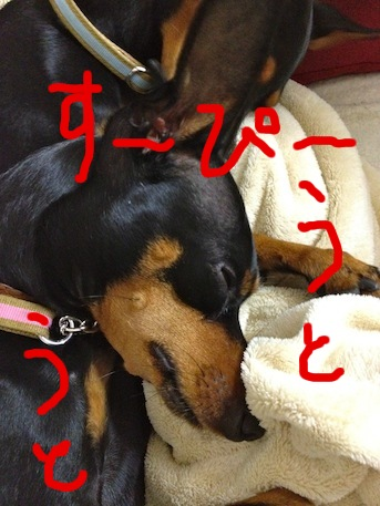 20120227-3.png