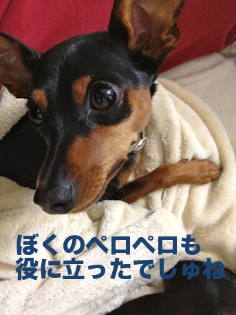 20120227-4.png