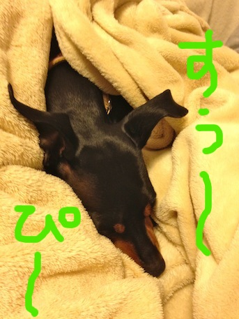 20120301-3.png