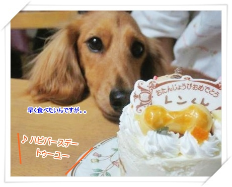 レン★ケーキ