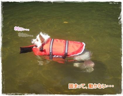 ラン~川下り