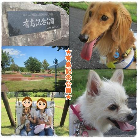 有島記念公園