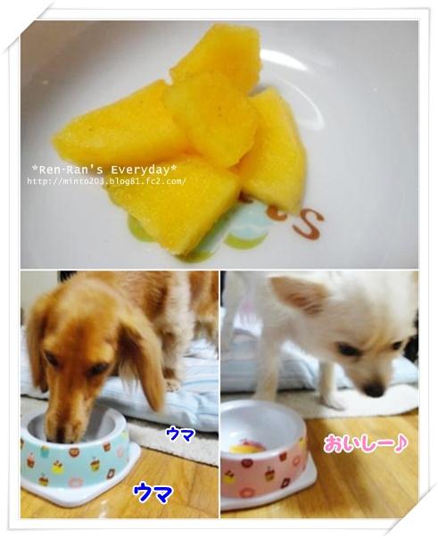 柿~レンラン