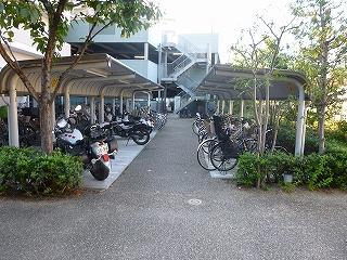 リバーガーデン三国ケ丘けやき通り blog (6)