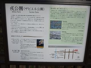 P10100244 (13)