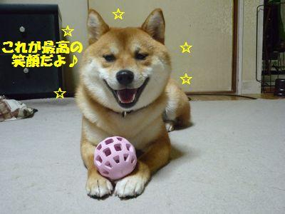 これが最高の笑顔だよ