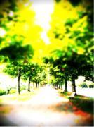 iphone_20111007111037.jpg