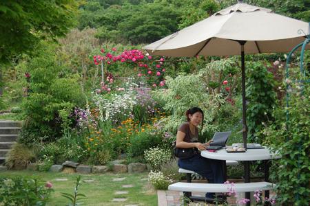 garden - 05