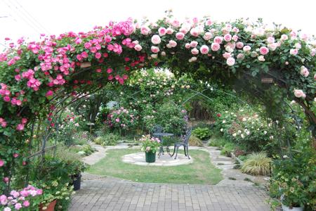 garden - 14