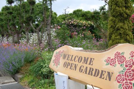 garden - 18