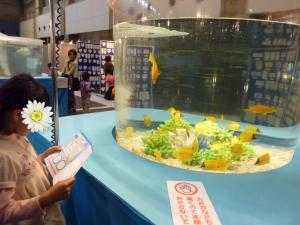 青い海の水族館2