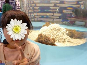 青い海の水族館