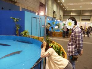 青い海の水族館21