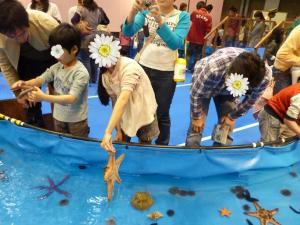 青い海の水族館27