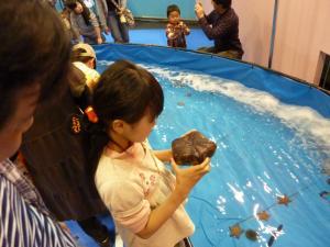 青い海の水族館33