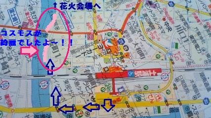 CAKXXK41_20101008203026.jpg