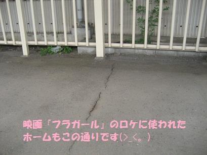 IMG_0047_20110501201305.jpg