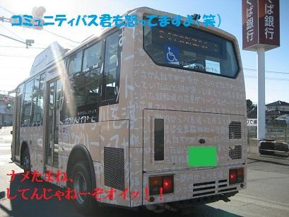 IMG_0100_20101217212452.jpg