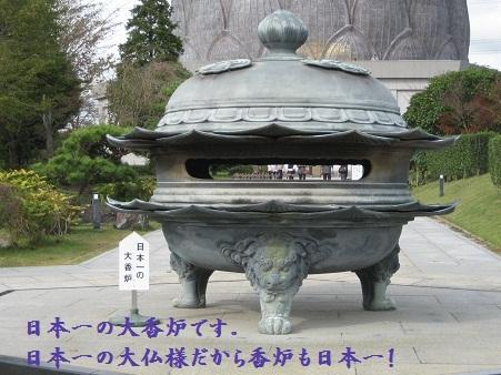 IMG_0283_20111030205207.jpg