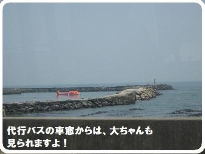 IMG_0293_20110524210950.jpg