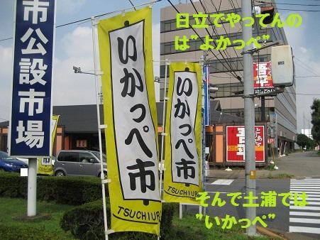 IMG_0502_20110910215331.jpg