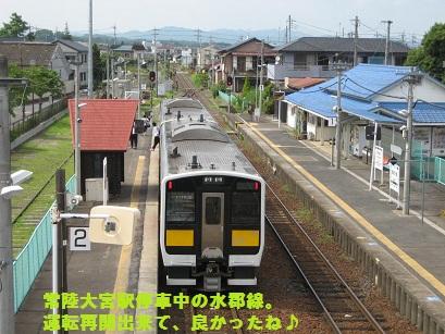 IMG_0571_20110619215344.jpg