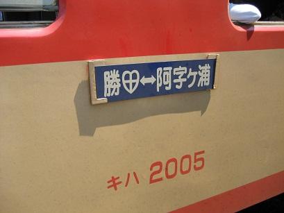 IMG_1060.jpg