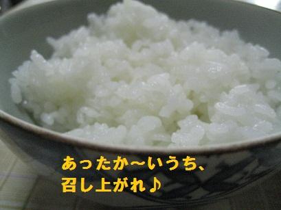 IMG_2271_20100915213421.jpg
