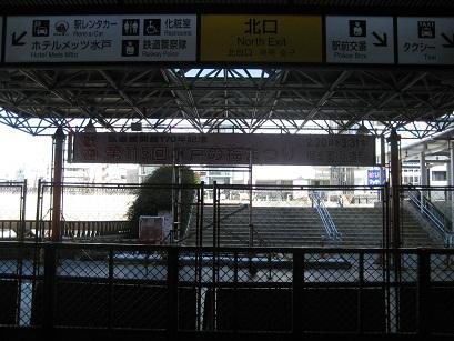 IMG_4181.jpg