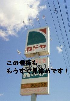 NEC_0727.jpg