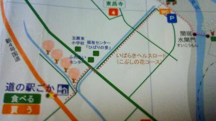 NEC_0785.jpg