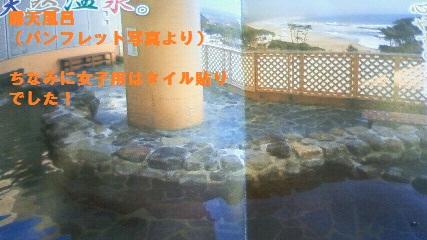 NEC_0940.jpg