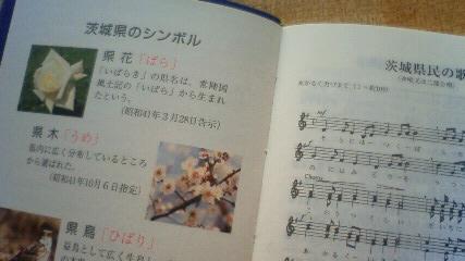 NEC_1029.jpg