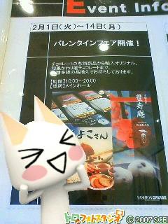 NEC_1113.jpg