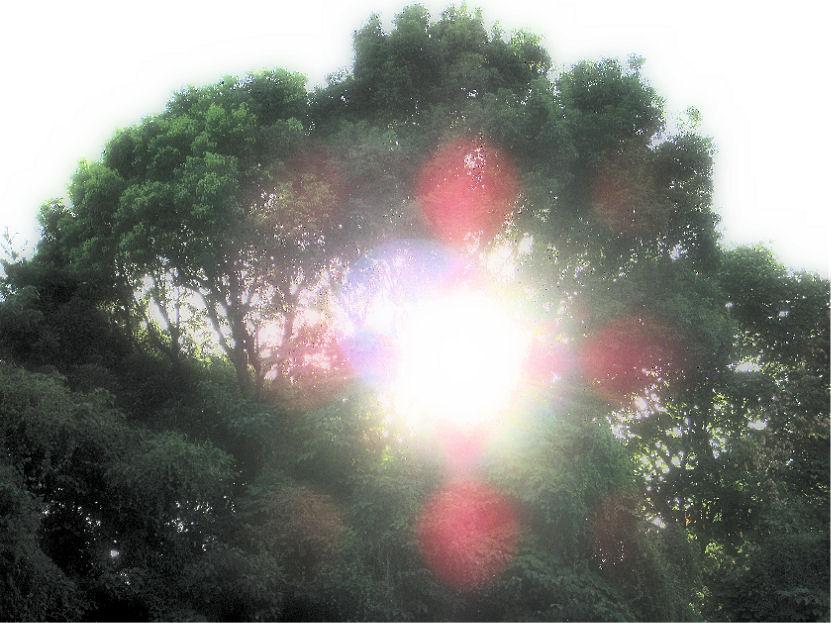 国立新美術館近くより 撮影 松田光司