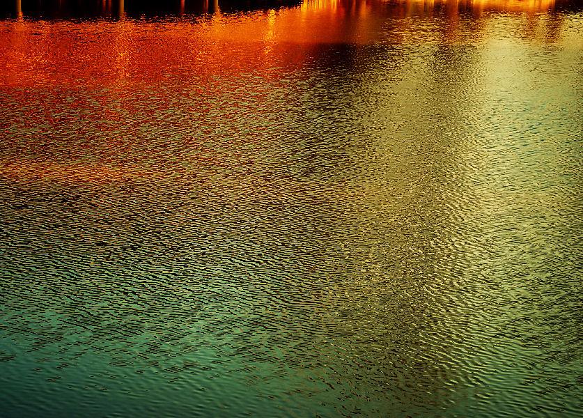 称名寺の池 撮影 松田光司