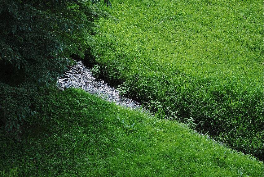 厳美渓に流れ込む水 撮影 松田光司