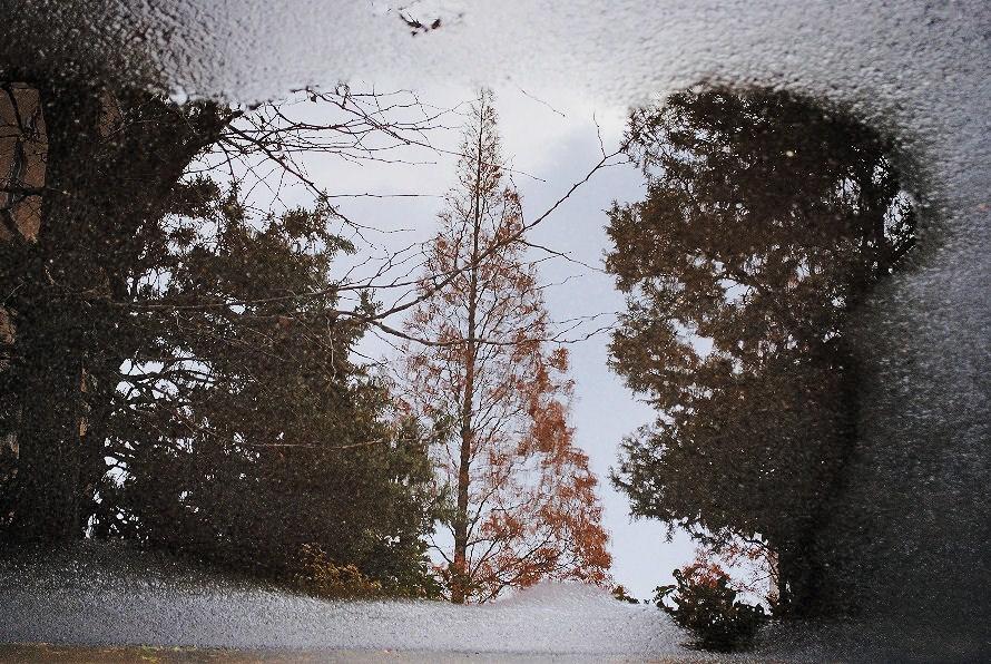 アスファルトの水たまり 撮影 松田光司