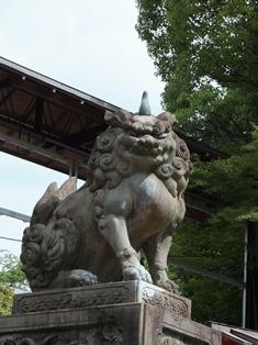 八坂神社のかわいい子