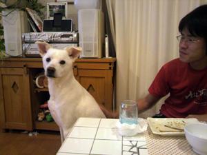 食後の2人