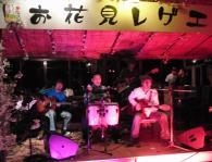 お花見レゲエ Live