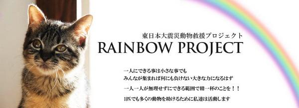 rainbowg_20110615011437.jpg