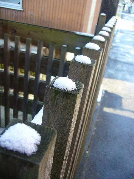 可愛い雪のマシュマロ